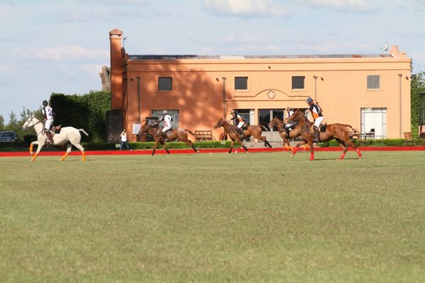 Polo game in Buenos Aires