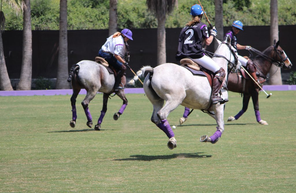 Polo Valley Polo Game