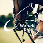 Waireka Polo Farm